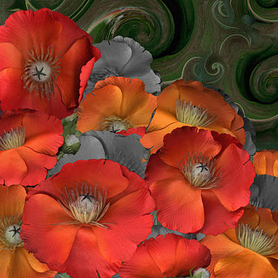 Poppy Art Print by Stan Bowman