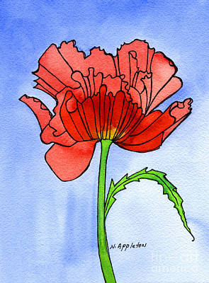 Poppy Art Print by Norma Appleton