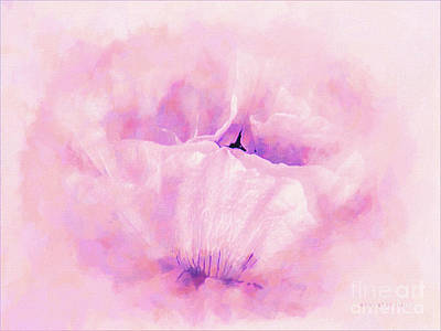 World Forgotten Rights Managed Images - Poppy Pastel Flower Portrait Royalty-Free Image by Mona Stut