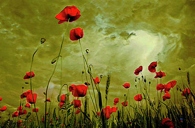 Petals Art Mixed Media - Poppy Petals by  Fli Art