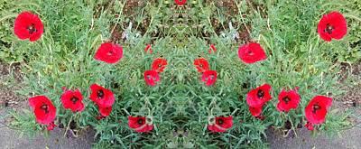 Photograph - Poppy Photo 1172 Mirror by Julia Woodman