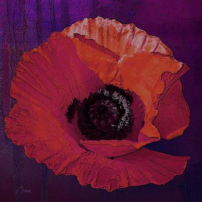Photograph - Poppy Power by I'ina Van Lawick
