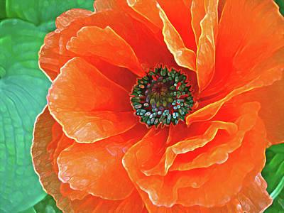 Mixed Media - Poppy Red by Lynda Lehmann