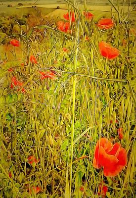 Digital Art - Poppy Tapestry by Dorothy Berry-Lound