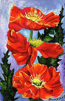 Painting - Poppy Three by Sherry Shipley