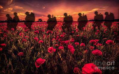 Little Mosters - Poppy Walk by Airpower Art