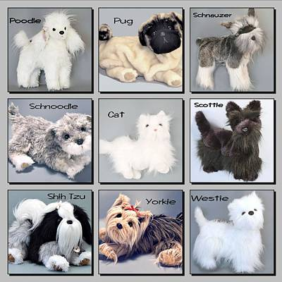 Photograph - Popular Pooches by David and Lynn Keller