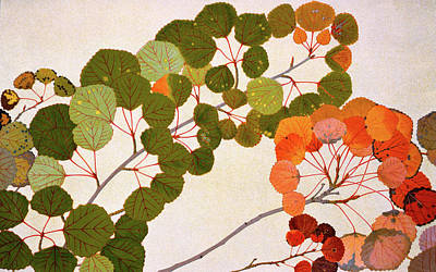 Rust Painting - Populus Tremula Or European Aspen by Philippe Robert