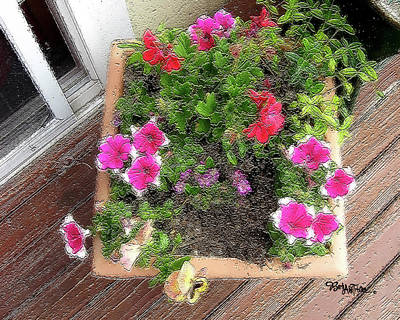 Photograph - Porch Flowers #057 by Barbara Tristan
