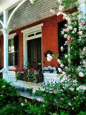 Photograph - Porch With Climbing Roses by Susan Savad