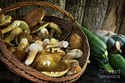 Photograph - Porcini Mushrooms, Zucchini And A Pumpkin by IPics Photography