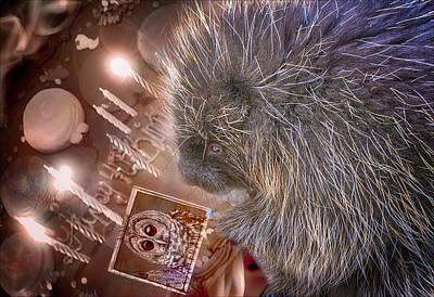 Photograph - Porcupine Birthday  by LeeAnn McLaneGoetz McLaneGoetzStudioLLCcom