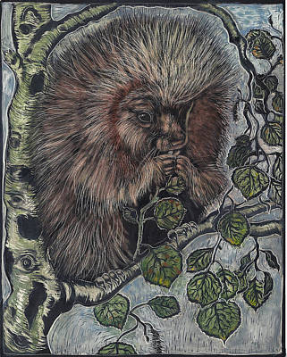 Drawing - Porcupine In Aspen by Dawn Senior-Trask