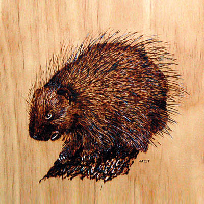 Pyrography - Porcupine Pillow/bag by Ron Haist