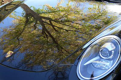 Photograph - Porsche Tree by Bill Dutting