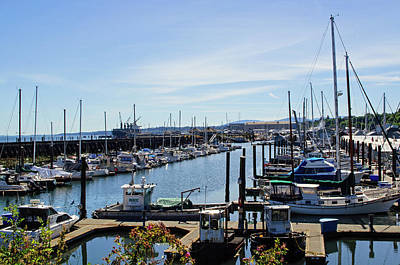 Photograph - Port Angeles Marina by Tikvah's Hope