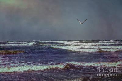 Photograph - Port Aransas by Lynn Sprowl