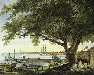 Port Of Philadelphia, 1800 Art Print by Granger