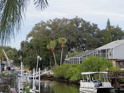 Photograph - Port Richey Lifestyle by Belinda Lee