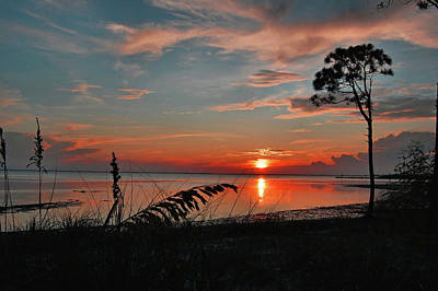 Photograph - Port St Joe Sunset by Ben Prepelka