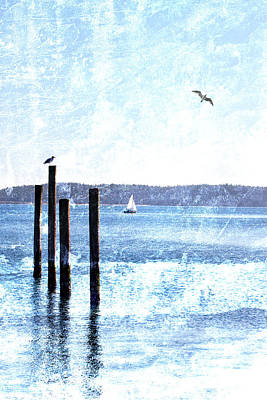 Sea Birds Mixed Media - Port Townsend Pilings by Carol Leigh