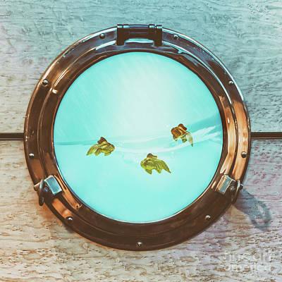 Goldfish Photograph - Portal by Amanda Elwell