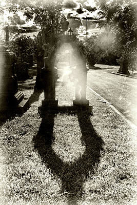 Photograph - Portal by Sharon Popek