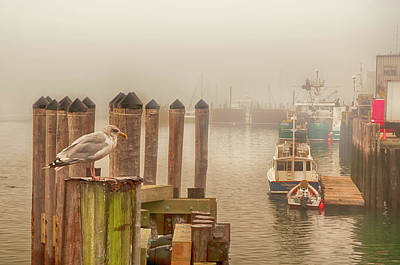 Photograph - Portland Harbor Morning by Mick Burkey