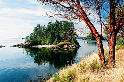 Photograph - Portland Island by Frank Townsley