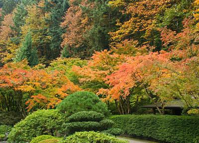 Photograph - Portland Japanese Garden In Autumn by Kunal Mehra