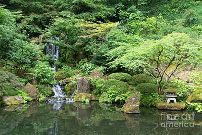 Photograph - Portland Japanese Garden Portland Oregon Dsc6667 by Wingsdomain Art and Photography