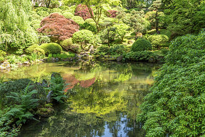 Photograph - Portland Japanese Garden by Willie Harper