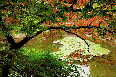 Photograph - Portland - Lan Su Chinese Garden 001 by Lance Vaughn