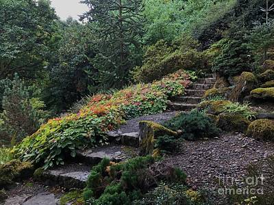 Photograph - Portland, Oregon Autumn Garden by Charlene Mitchell
