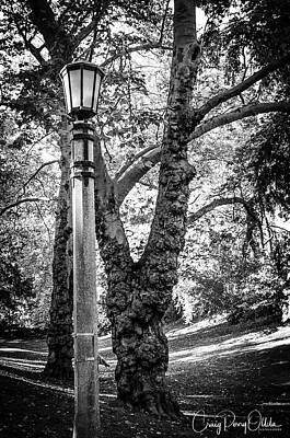 Photograph - Portland Park Walk by Craig Perry-Ollila