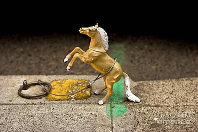 Portland Pony Original by Jon Cretarolo