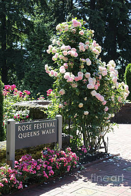 Photograph - Portland Rose Garden With Sign by Carol Groenen