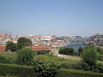 Photograph - Porto Garden View IIi Portugal by John Shiron