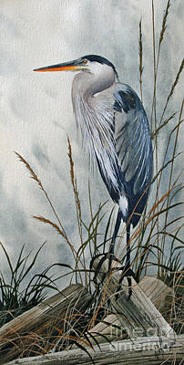 Heron Painting - Portrait In The Wild by James Williamson