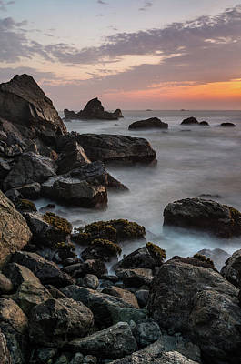 Photograph - Portrait Landscape From Patrick's Point by Greg Nyquist