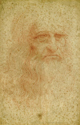 Self Shot Drawing - Portrait Of A Bearded Man, Possibly A Self Portrait by Leonardo da Vinci