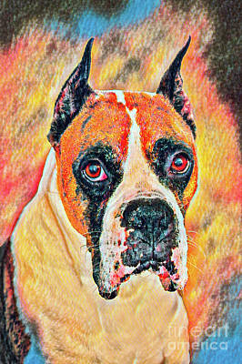 Photograph - Portrait Of A Boxer-painted Emmett by Mary Raderstorf