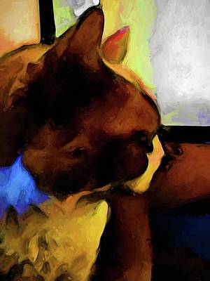 Digital Art - Portrait Of A Brown And Blue Cat by Jackie VanO