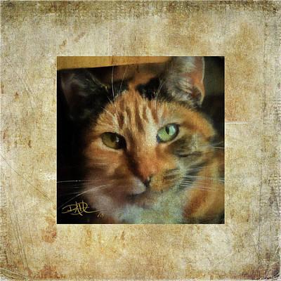 Digital Art - Portrait Of A Cat by Ricardo Dominguez