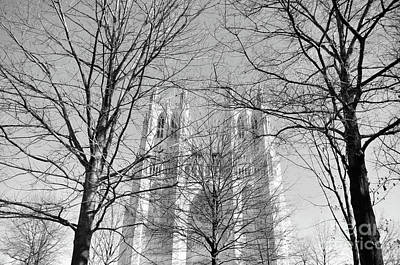 Photograph - Portrait Of A Cathedral by John S