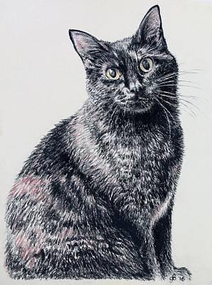 Portrait Of A Good Looking Cat Art Print by Glenn Boyles