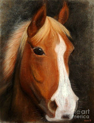 Horse Pastels Painting - Portrait Of A Horse by Jasna Dragun