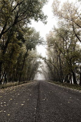 Photograph - Portrait Of A Moody Fall Road by Tony Hake