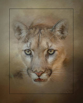 Mixed Media Royalty Free Images - Portrait of a Mountain Lion Royalty-Free Image by Teresa Wilson