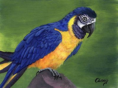 Painting - Portrait Of An Island Macaw by Long Studios